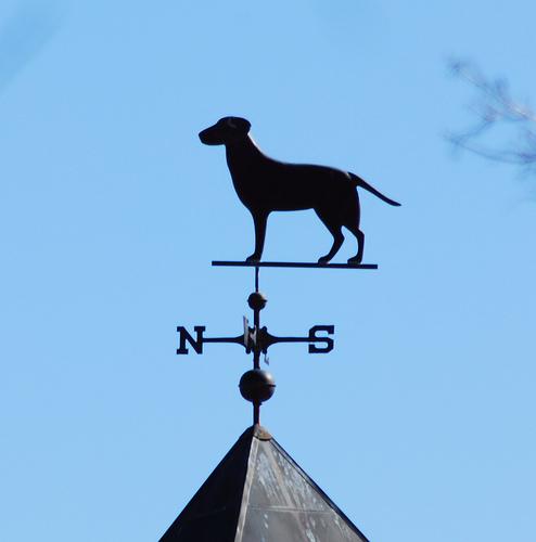 Dog weathervane